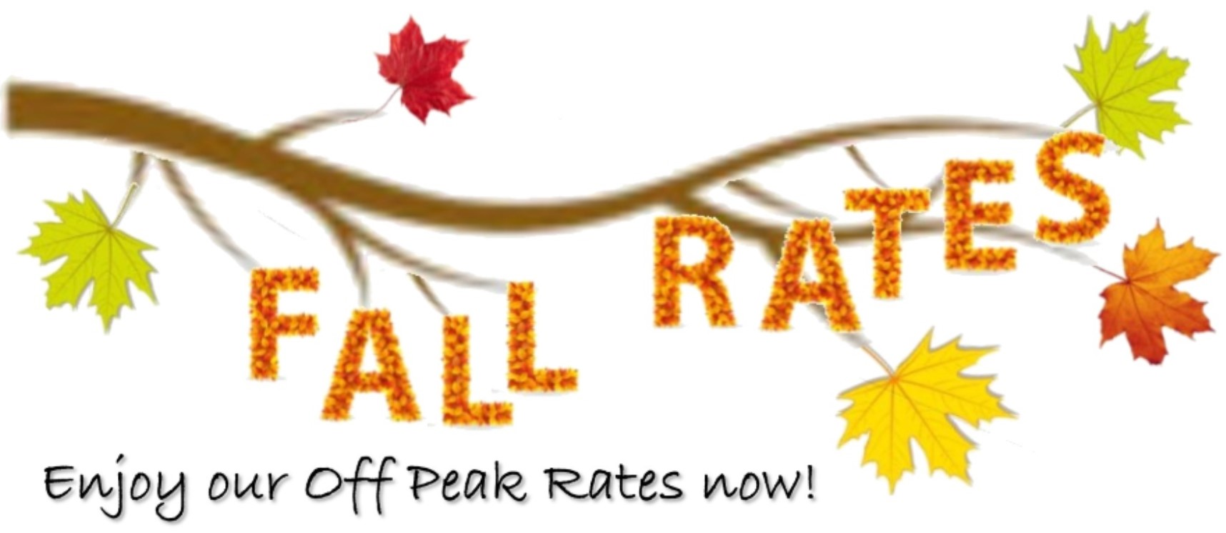 Fall Rates Small